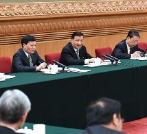 刘云山张高丽分别参加全国人大会议代表团审议