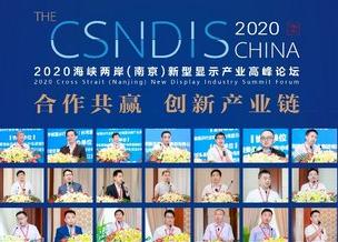 2020海峡两岸(南京)新型显示产业高峰论坛成功举办481038